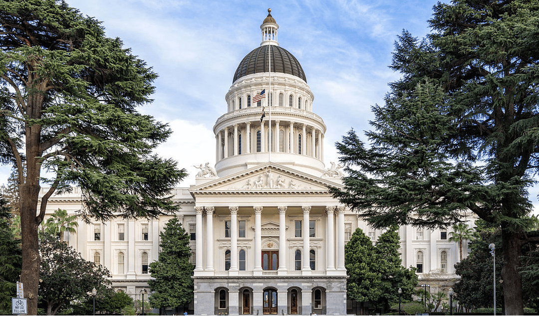 ANA Members Testify at California State Capitol